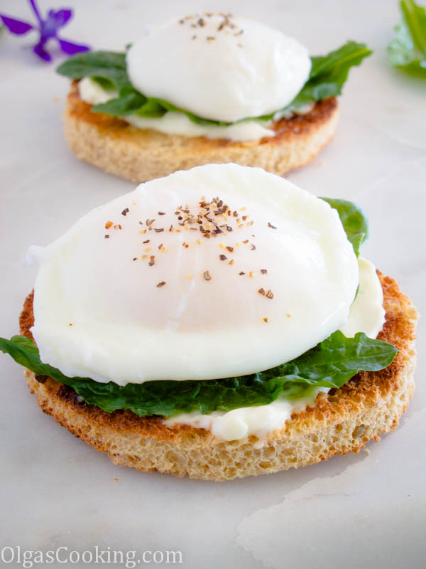 Poached Egg Sandwich Olgas Cooking
